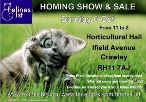 The flyer has details of the Cat Homing Show on Sunday 6th October. The flyer features the Felines1st logo, a cute tabby cat looking over its shoulder in a green field.