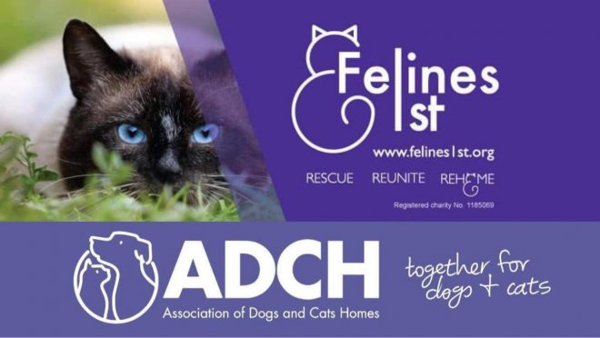 ADCH Felines 1st combined logo